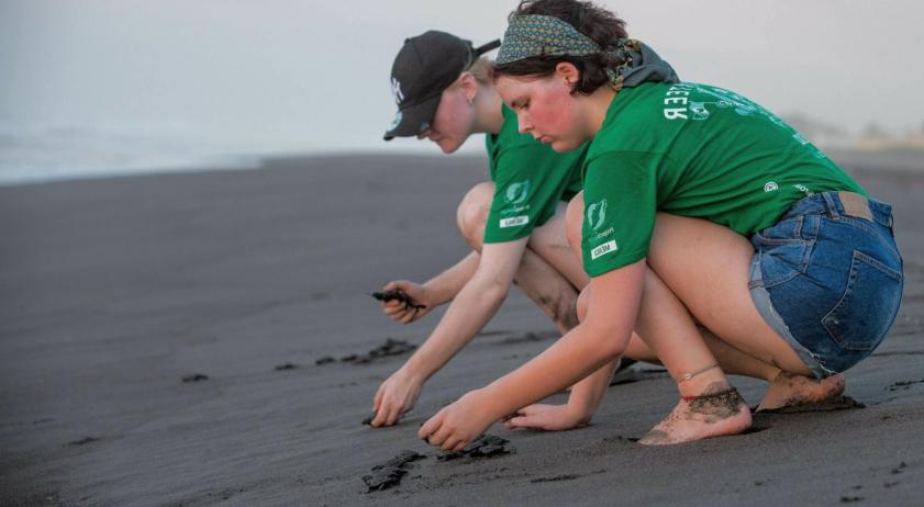 Ways to protect the environment through volunteerism